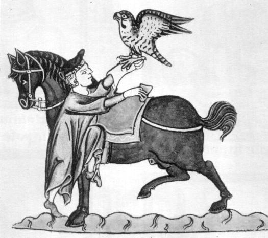 Halcón y caballo.jpg