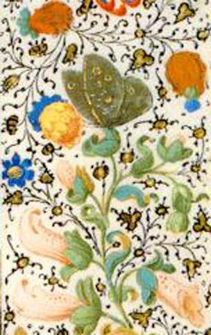 Manuscrito Lord Devonshire: detalle mariposa en la orla.jpg